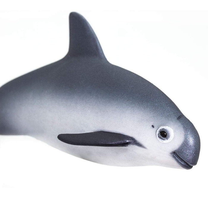 Vaquita Porpoise - Safari Ltd®