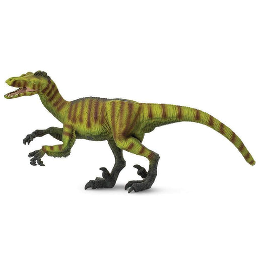 Velociraptor Toy | Dinosaur Toys | Safari Ltd.