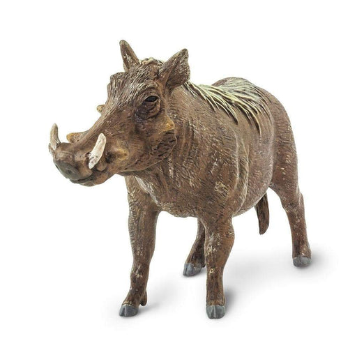 Warthog - Safari Ltd®