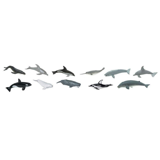 Whales & Dolphins TOOB® - Safari Ltd®