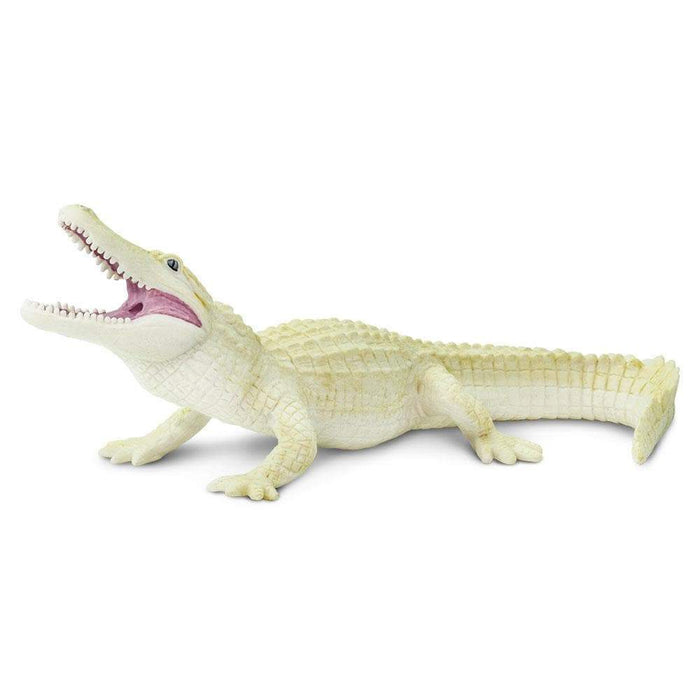 White Alligator - Safari Ltd®