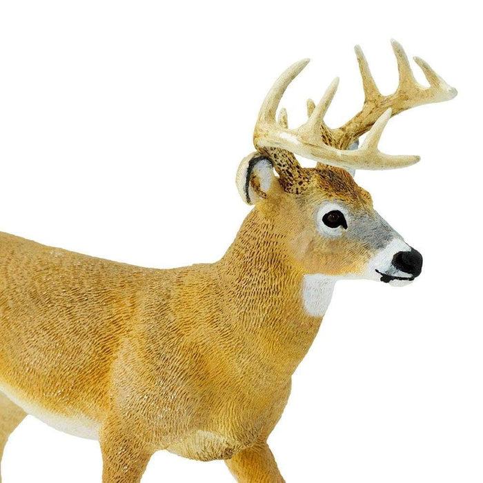Whitetail Buck Toy | Wildlife Animal Toys | Safari Ltd.