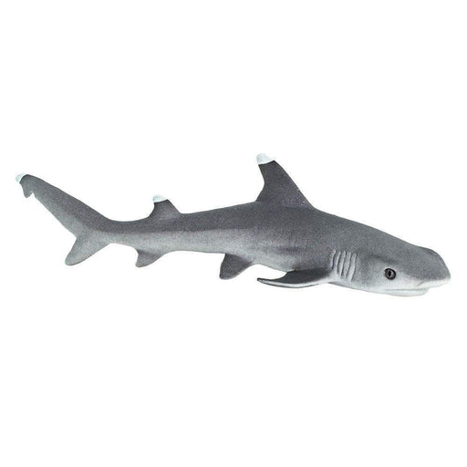 Whitetip Reef Shark - Safari Ltd®