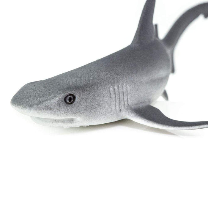 Whitetip Reef Shark Toy - Sea Life Toys by Safari Ltd.