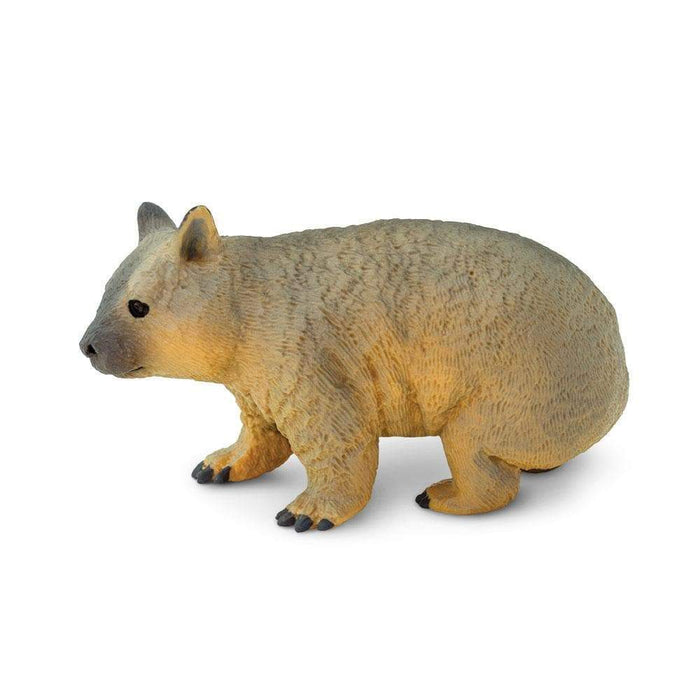 Wombat - Safari Ltd®