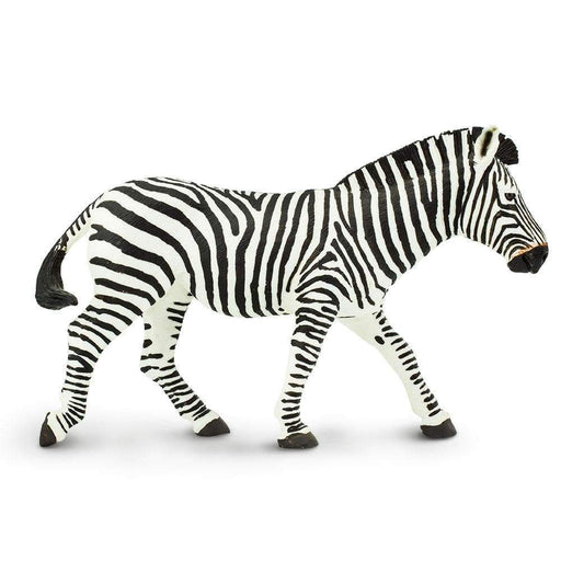 Zebra - Safari Ltd®