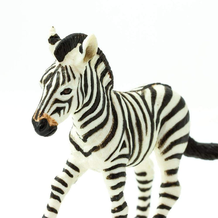 Zebra Foal - Safari Ltd®