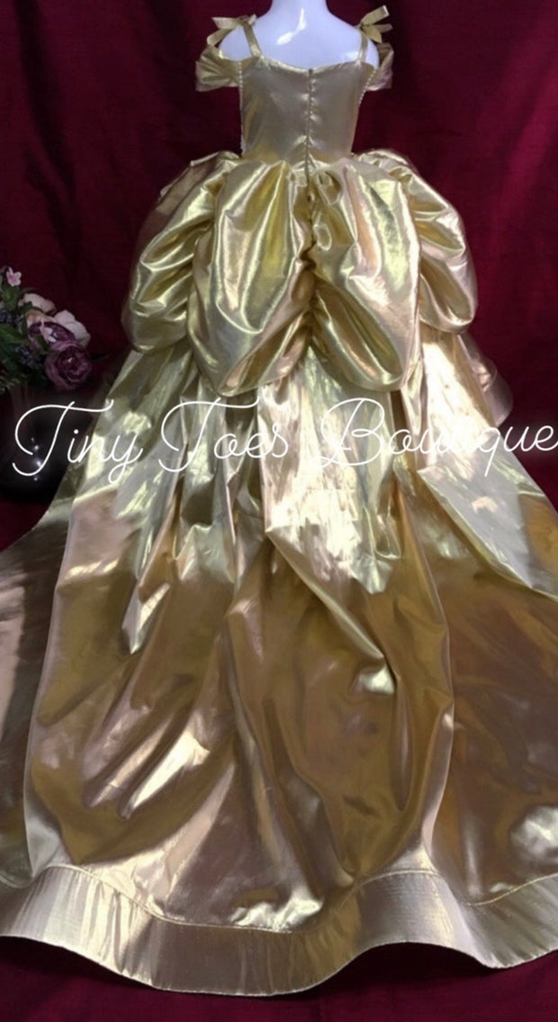 Princess Belle Inspired Gown