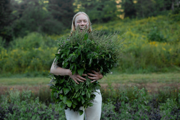 From the Earth: Heilbron Herbs