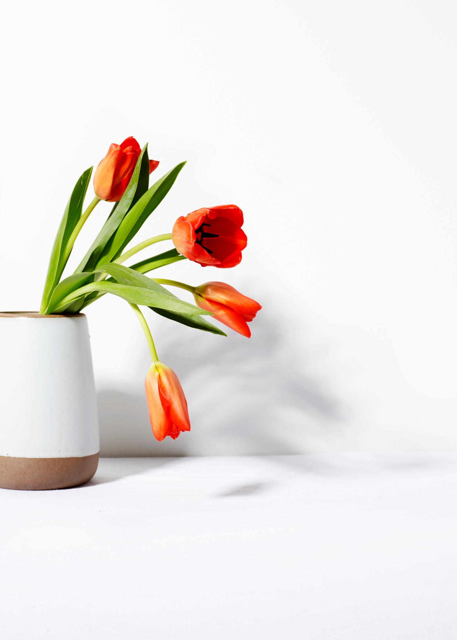 Eggshell Small Slope Vase
