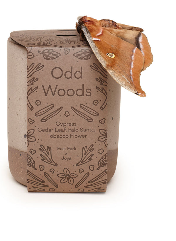 Odd Woods Candle Poured by Joya, designed by East Fork, with a moth, in Asheville, NC