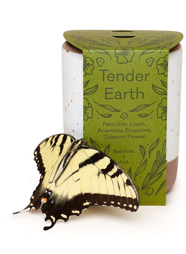 Tender Earth Candle with a butterfly. Poured by Joya in Brooklyn, New York, designed by East Fork in Asheville, NC