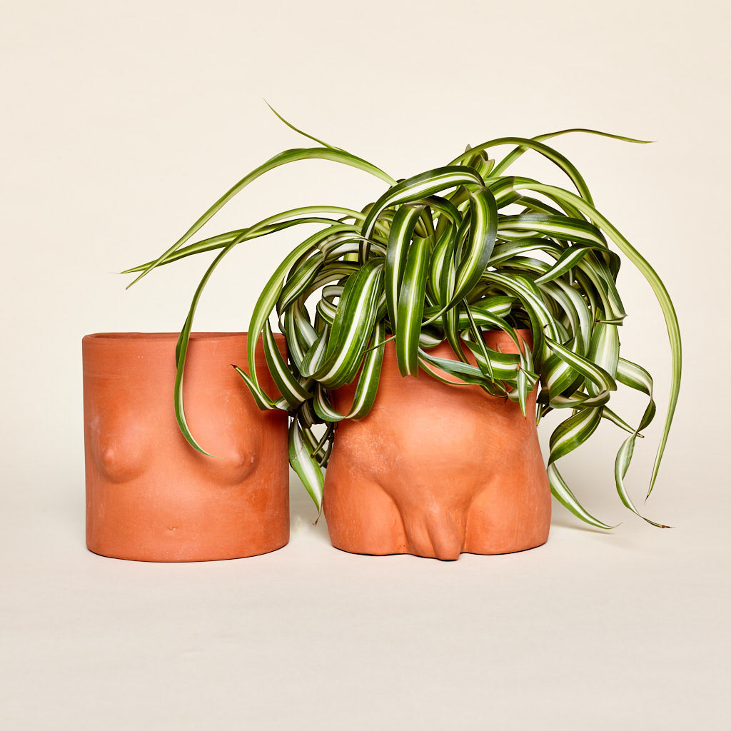 Terra Cotta Boy + Girl Pots