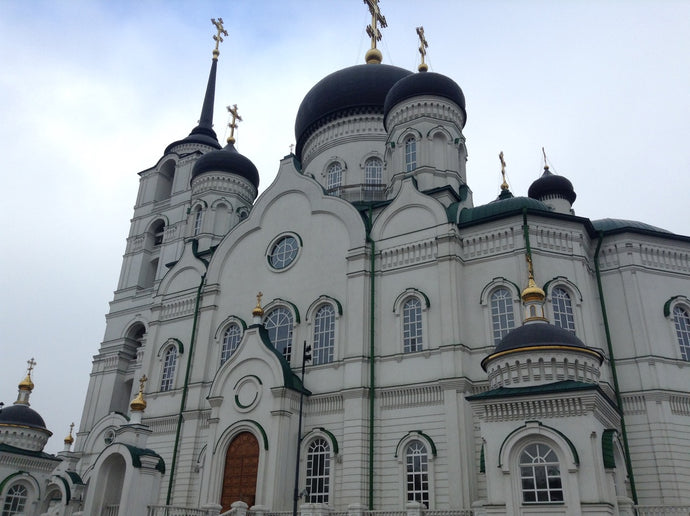 Mission Snapshot: Russia Moscow Mission