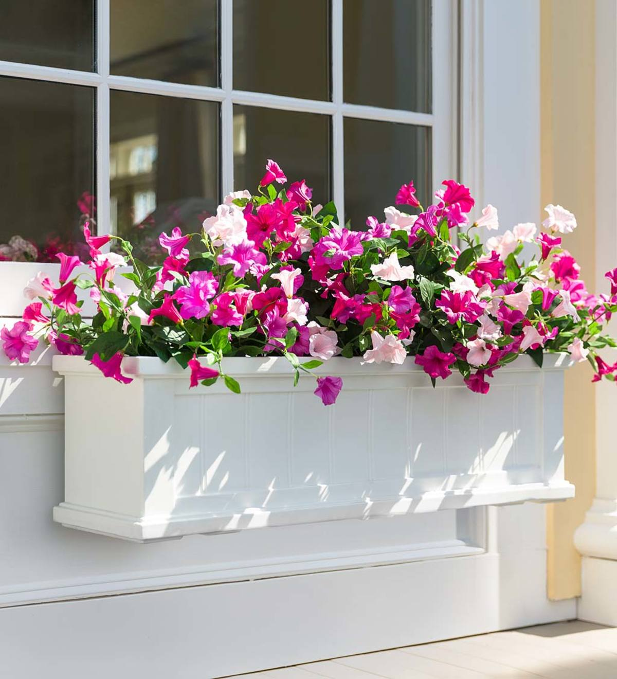 Beautiful Recipes for Window Boxes in Shade