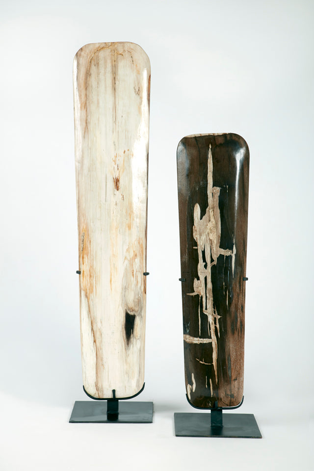PETRIFIED WOOD SURFBOARDS