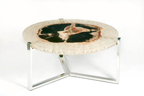 PETRIFIED WOOD AND RESIN TABLE