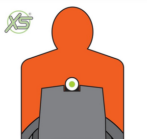 XS Sights - Standard Dot Tritium For Ruger LCR .38/.357 Only (Not .22 or 9mm)