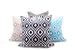 Black Retro Outdoor Pillow
