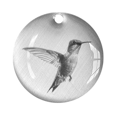 Hummingbird Floating On Air