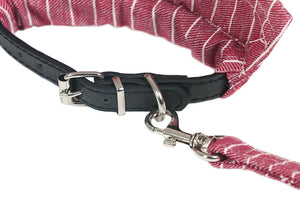 Cat Walking Harness and Leash