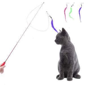 Cat Toy Wire Feather