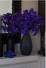 Blue Purple Vanda - 5 Stems Only (Vase Not Included)