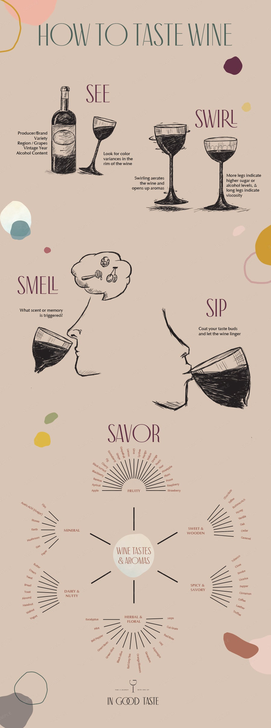 Infographic on the 5 Steps to Properly Taste Wine