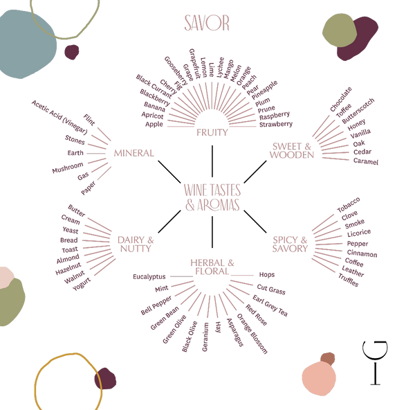 How to Properly Taste Wine - Flavor & Aromas Wheel