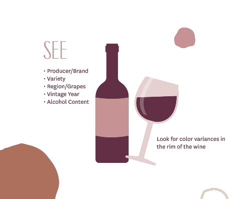 How to Properly Taste Wine - See