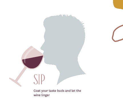 How to Properly Taste Wine - Sip