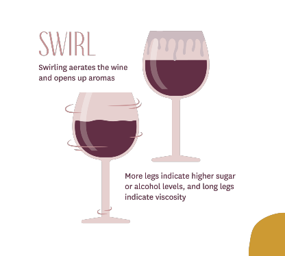 How to Properly Taste Wine - Swirl