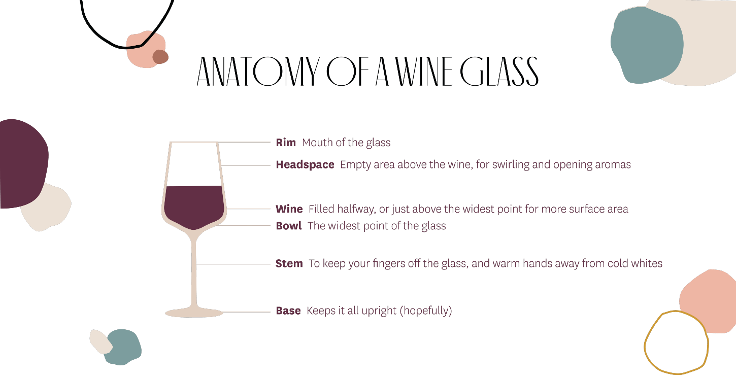 Parts of a Wine Glass