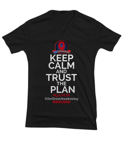 Image of Q-Trust the Plan V-Neck Shirt