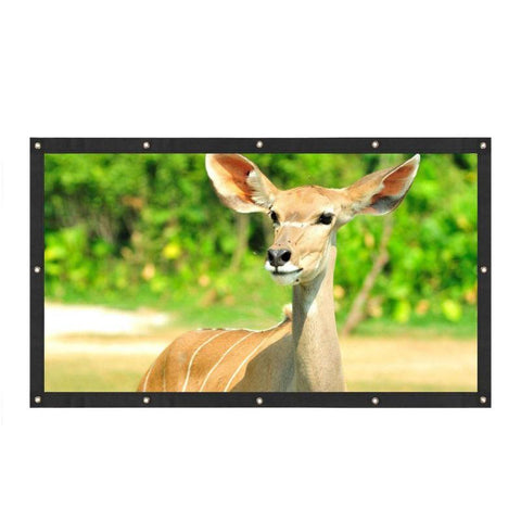 Image of Projection Screen Portable Canvas 3D HD 16:9  4K Compatable