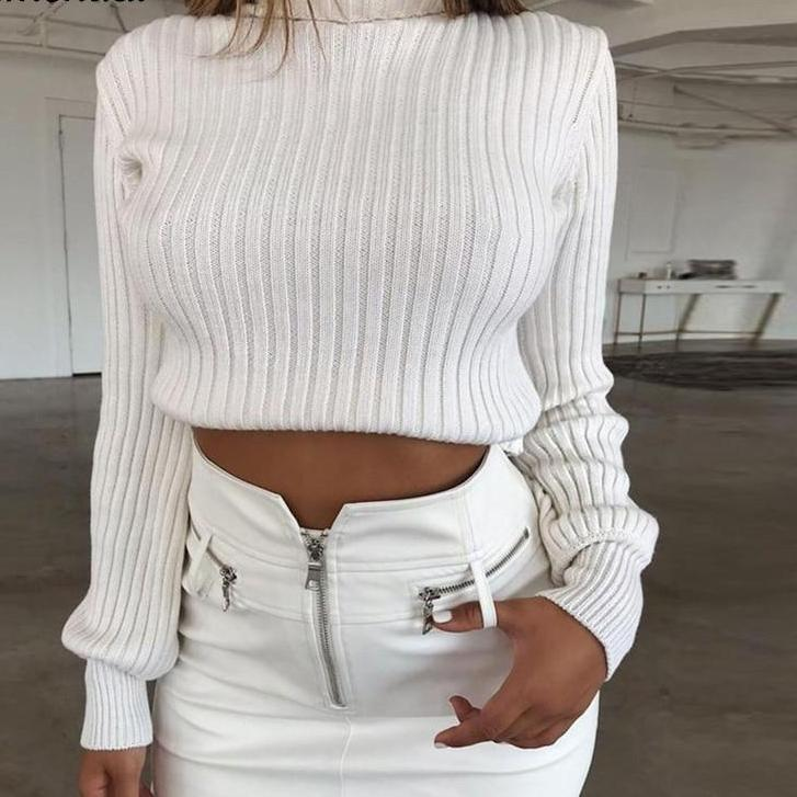 Myhotstuff Short Turtleneck Knitted Sweater