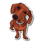Dachshund Bumper Sticker, Automotive Bumper Sticker for Cute Dog Lovers
