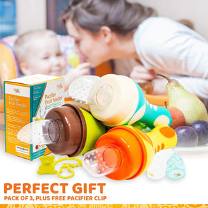 Fruit Pacifier Baby Food Feeder