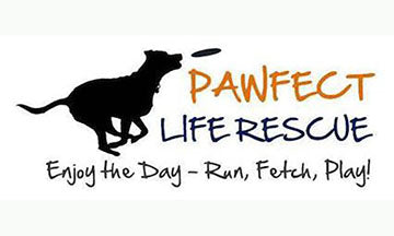 It's a Pawfect Life Rescue - A highlight of our MA featured Animal Shelter for March - May 2018
