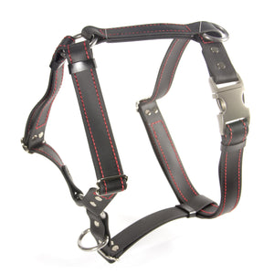 Everyday Harness