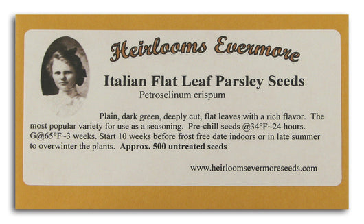 Italian Flat Leaf Parsley Seeds