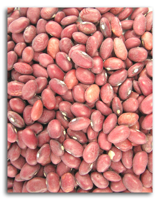 Red Beans (small)