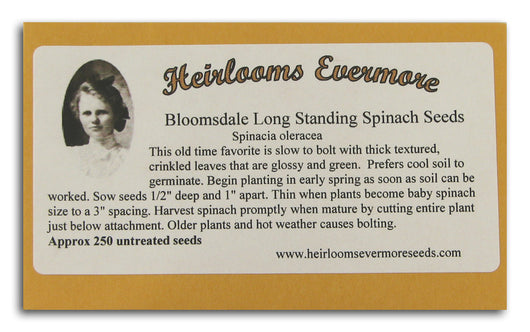 Bloomsdale Long Standing Spinach See