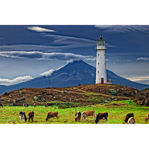 Cape Egmont, Taranaki, New Zealand - LGT013