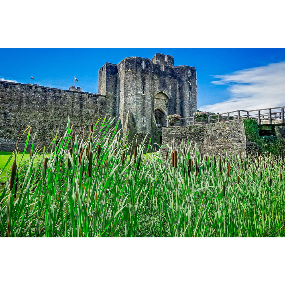 Caerphilly Castle - FCF018
