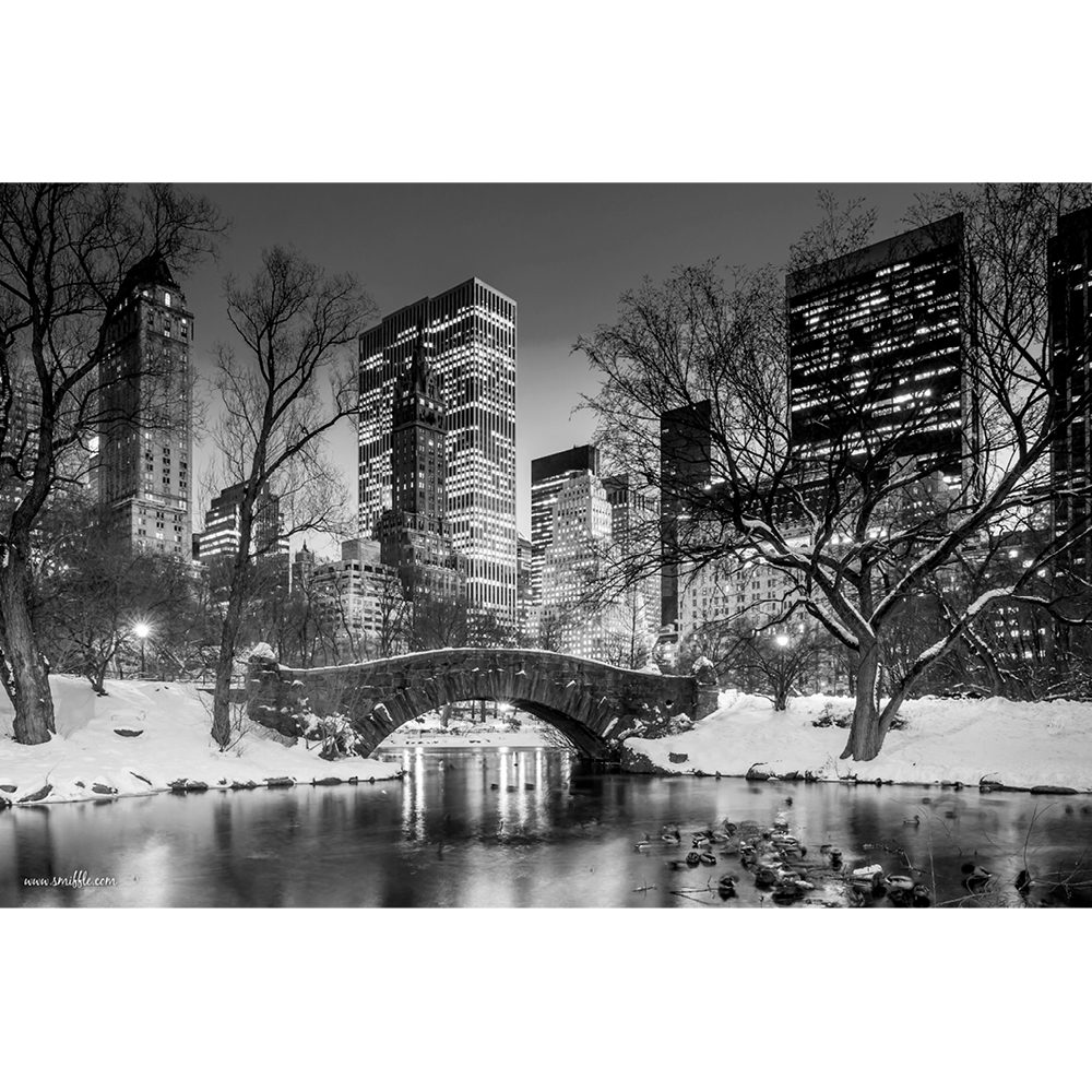 Gapstow Bridge, Central Park - NY024