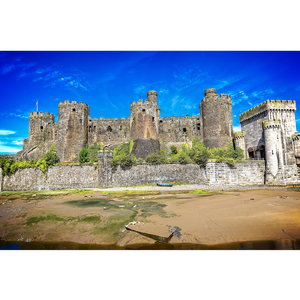 Conwy Castle - FCF028