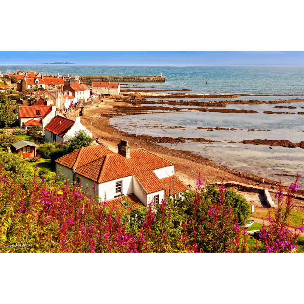 Pittenweem, Scotland - FST146