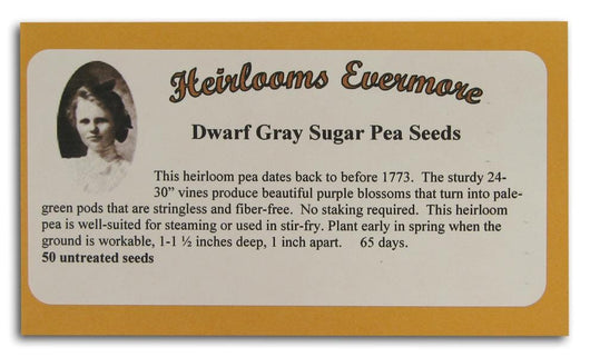 Heirlooms Evermore Dwarf Gray Sugar Pea Seeds Flower - 50 seeds