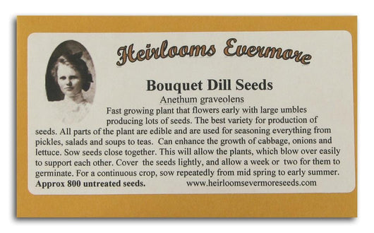 Heirlooms Evermore Bouquet Dill Seeds - 800 seeds
